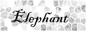 "The word ""elephant"""