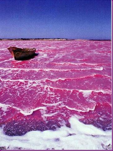Pink Lake 1